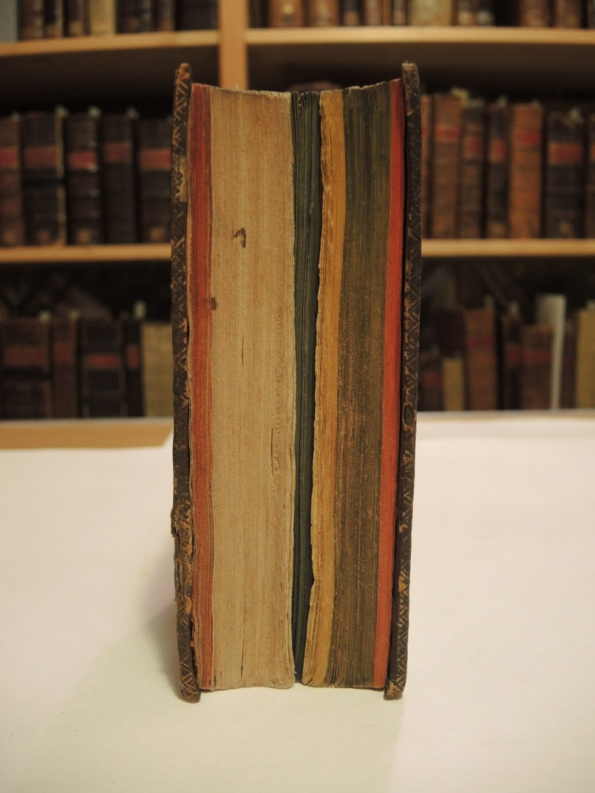 Example of the coloured fore edge (Photograph by Nikki Tomkins)
