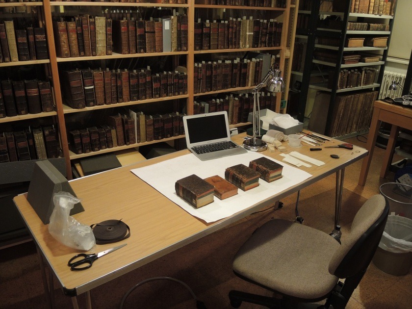 The in situ conservation work station set up (Photograph by Nikki Tomkins)