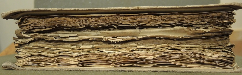 Example of abraded page edges with numerous tears (Photograph by Nikki Tomkins)