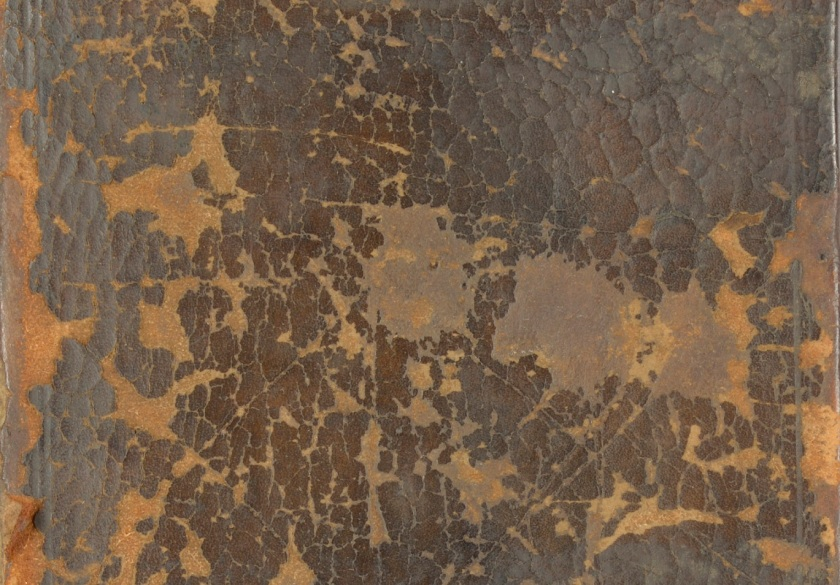 Detail of a leather surface showing the crazed and flaking condition (Photograph by Nikki Tomkins)