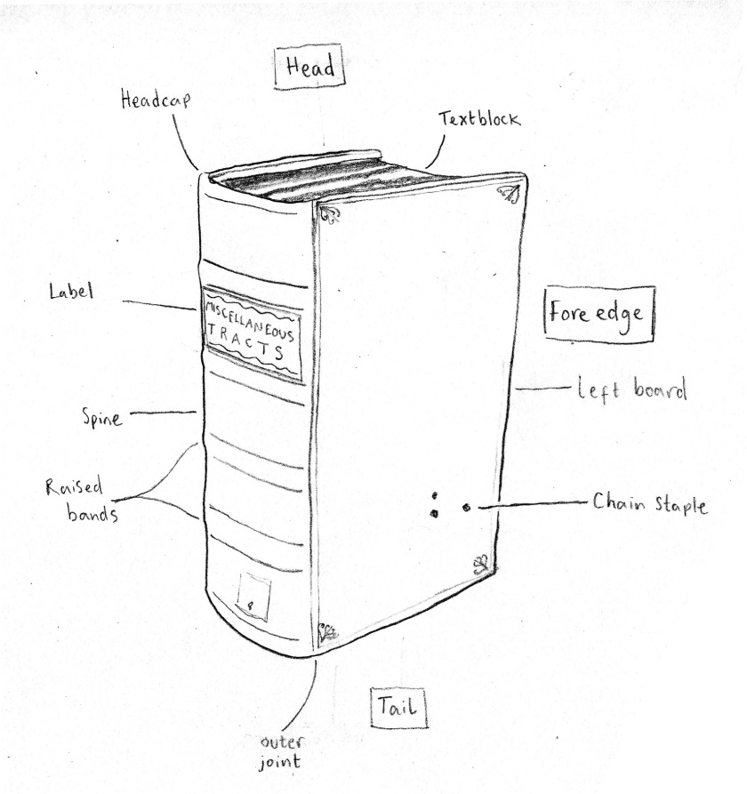 Key components of a binding (Sketch and photograph by Nikki Tomkins)