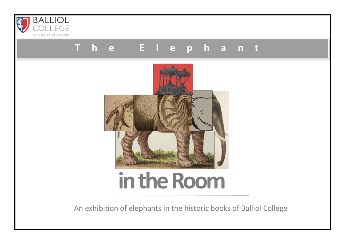 The Elephant in the Room Part2