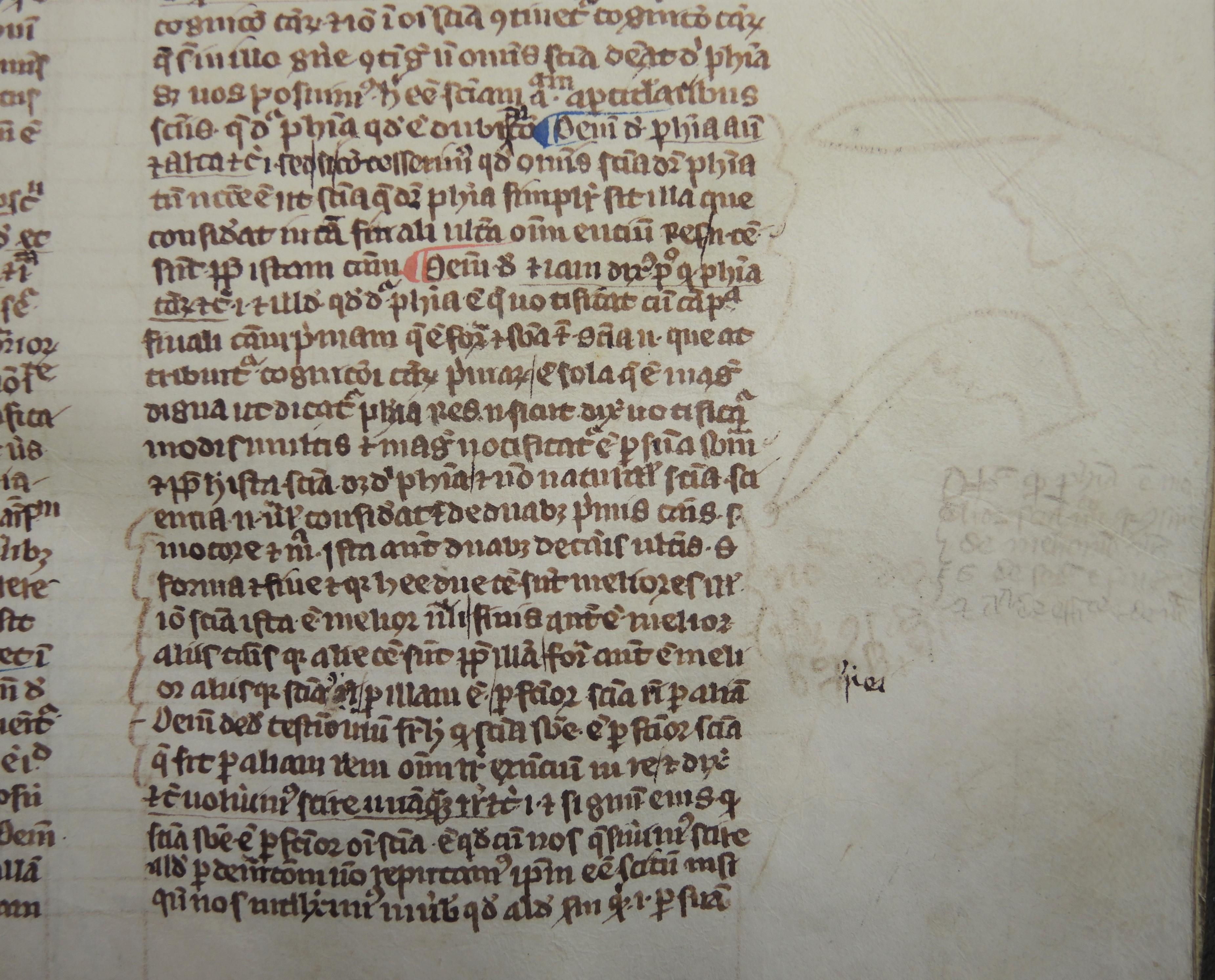 Detail of Averooes Manuscript Ms 112 showing marginalia and doodles